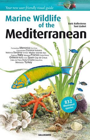 MARINE WILDLIFE OF THE MEDITERRANEAN
