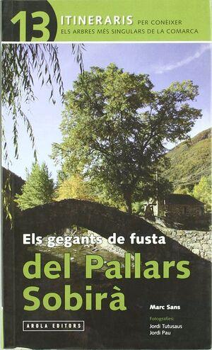 ELS GEGANTS DE FUSTA  PALLARS SOBIRÀ