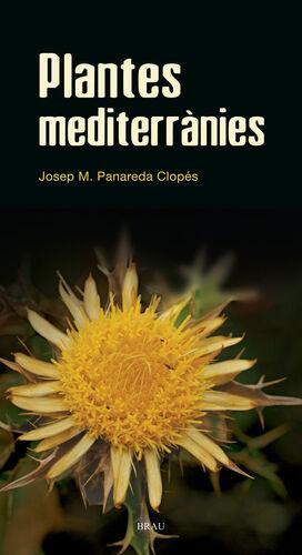 PLANTES MEDITERRÀNIES